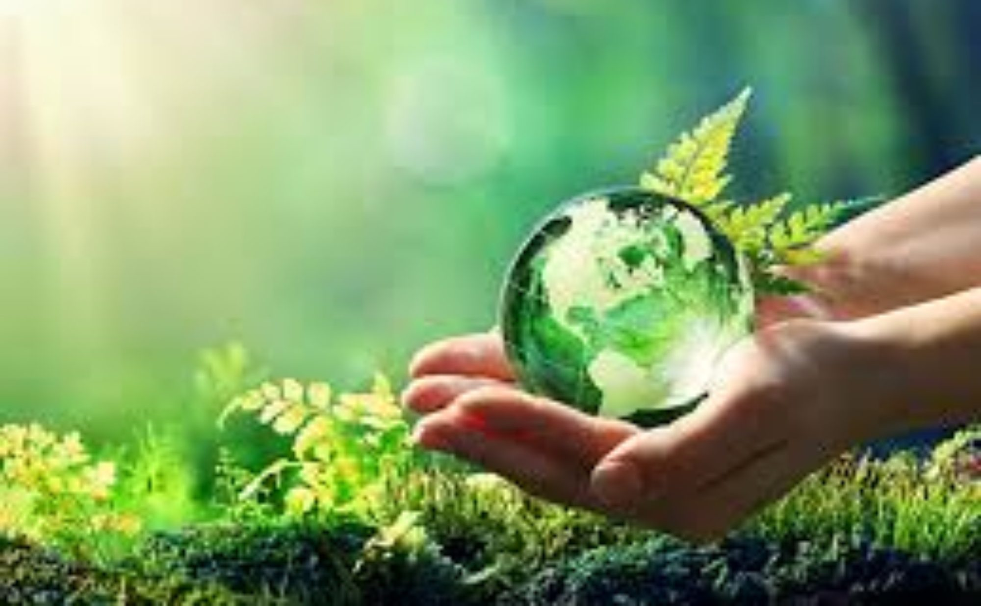 Environmentally responsible products and how to best use them